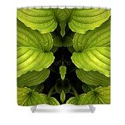 Creation 65 Shower Curtain