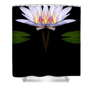 Creation 74 Shower Curtain