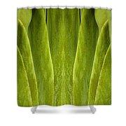 Creation 86 Shower Curtain