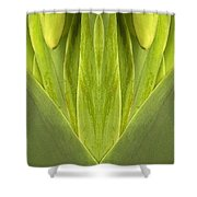 Creation 87 Shower Curtain