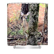 Creature Of The Forest Shower Curtain