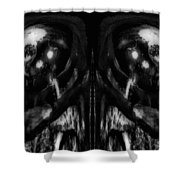 Black And White Mirror Shower Curtain