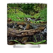Creek End Shower Curtain