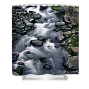 Creek Flow Panel 3 Shower Curtain