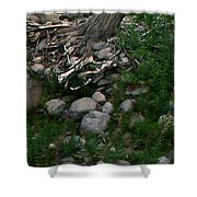 Creek Flow Panel 4 Shower Curtain
