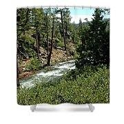 Creek Glen Alpine Creek Shower Curtain