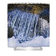 Creek In Mount Rainier National Park Shower Curtain