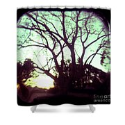 Crepescule Shower Curtain