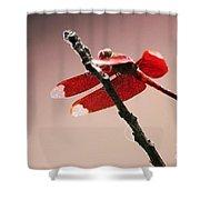 Crimson Wings At Dusk Shower Curtain