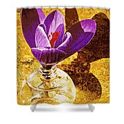 Crocus Graphic  Shower Curtain
