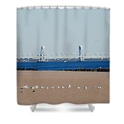 Cross Bay Bridge Shower Curtain