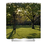 Cross In The Trees Shower Curtain by John Bowers