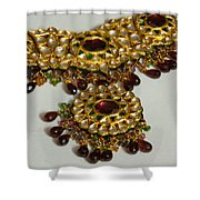 Cross Section Of A Purple And Yellow Gold Beautiful Necklace Shower Curtain by Ashish Agarwal
