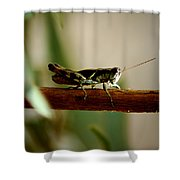 Crossing The Ravine Shower Curtain