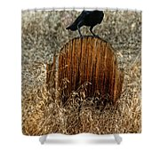 Crow On Old Wooden Grave Shower Curtain