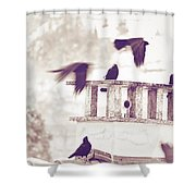 Crows On A Roof Shower Curtain by Silvia Ganora