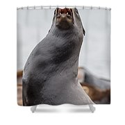 Crying In The Wilderness Shower Curtain