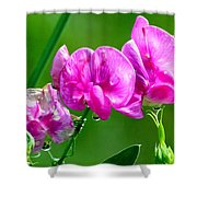 Crying Ladies Shower Curtain