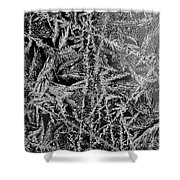 Crystal 13 Shower Curtain