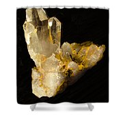 Crystal On Black Shower Curtain by Joyce Dickens
