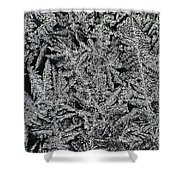 Crystals 8 Shower Curtain