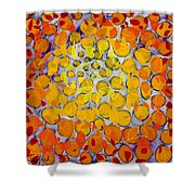 Culmination Three Shower Curtain