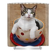 Cup O Tilly 3 Shower Curtain by Andee Design