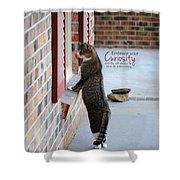 Curiosity Inspirational Cat Photograph Shower Curtain