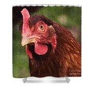 Curious Hen Shower Curtain