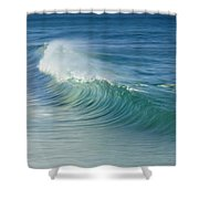 Curling Wave Shower Curtain