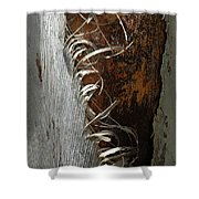 Curly Bark Of A Palm Tree Shower Curtain