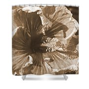 Curly Hibiscus In Sepia Shower Curtain