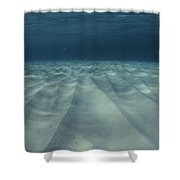 Current-sculpted Ripples In The Sandy Shower Curtain