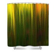 Curtain Shower Curtain