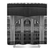 Curves And Poles Shower Curtain