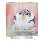 Cute Baby Birdy Shower Curtain