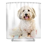 Cute Dog Portrait Shower Curtain