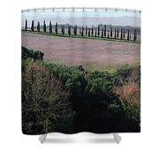 Cypress Allee Shower Curtain