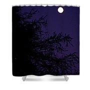 Cypress Moon Shower Curtain