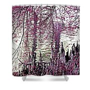 Cypress People Gather Shower Curtain