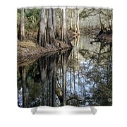 Cypress Reflections Shower Curtain