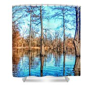 Cypress Swamp In Winter Shower Curtain