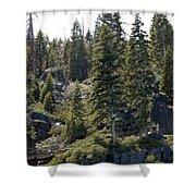 D. L. Bliss State Park Bridge Shower Curtain