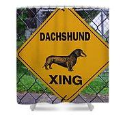 Dachshund Crossing Shower Curtain