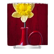 Daffodil In Red Pitcher Shower Curtain