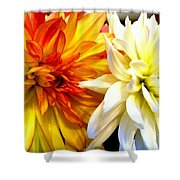 Dahlia Days Shower Curtain