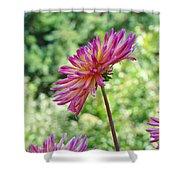 Dahlia Flower Art Print Green Summer Garden Shower Curtain