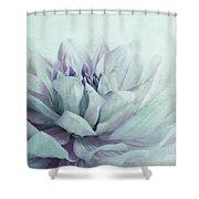 Dahlia Shower Curtain by Priska Wettstein