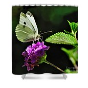 Dainty Butterfly 2 Shower Curtain