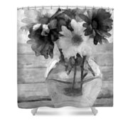 Daisy Crazy Bw Revisited Shower Curtain